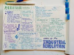 rule of law essay outline vocabulary
