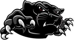 Black Panther Logo PNG Transparent Image.PNG