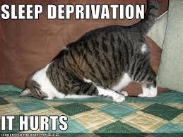 Sleep deprivation is making me stoopid.   Holliday's Inner Workings via Relatably.com