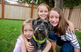 amazing pet stories best friends animal society three children hugging a dog