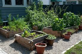 marvelous design inspiration vegetable gardening in arizona wonderful decoration container best our gardens images on