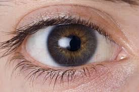 eye twitching causes and how to stop