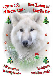 The Wolf Conservation Association vzw/asbl - Accueil   Facebook