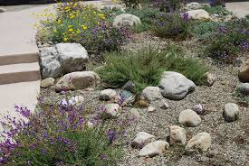 Small Picture drought resistant landscaping ideas Beautiful Drought Tolerant