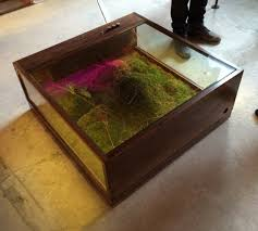 terrarium furniture. Huy-bui-table-terrarium Terrarium Furniture S