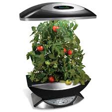 Herb Kitchen Garden Indoor Kitchen Garden Indoor Kitchen Garden Josaelcom Amazoncom