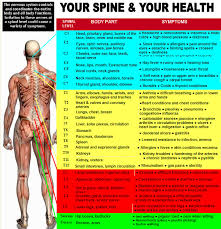 Vertebral Subluxation Chart Nerve Chart Kehoe Chiropractic