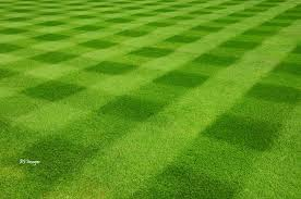 Mowing Patterns Unique Different Lawn Mowing Patterns Part I Lawn Care Tips Mower