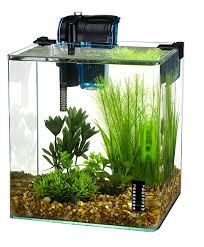 office desk fish tank. Amazon.com : Penn Plax Vertex Aquarium Kit For Fish And Shrimp With Filter, Thermometer, Desktop Size 2.7 Gallon Aquariums Pet Supplies Office Desk Tank A