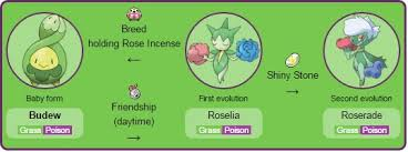 Images Of Budew Evolution Www Industrious Info