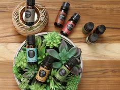 eden garden essential oils. Perfect Essential How To Blend Essential Oils Aromatic And Therapeutic Methods In Eden Garden E