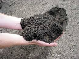 Image result for silt soil