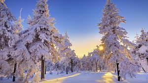 Winter Snow Wallpaper Winter, Snow ...