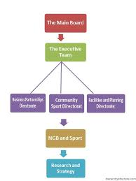 Sports Team Hierarchy Sports Organizational Structure