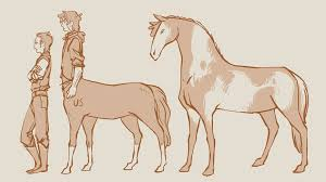 Horse Size Comparison Chart Centaur Comparison Doodle Stuff Height Chart Mythical