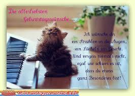 Geburtstagswünsche Für Ihre Haustiere Katze Katze Hat Geburtstag