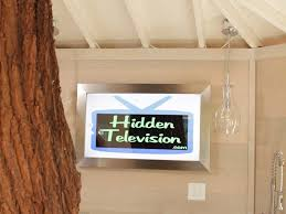 Treehouse masters mirrors Aesthetic This Framed Mirror Tv Was Part Of Treehouse Masters Special Hidden Television Samsung Mirror Tv Framed Dielectric Mirror