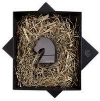 <b>Флешка</b> «Ход конем», черная, <b>8 Гб</b> для нанесения логотипа ...