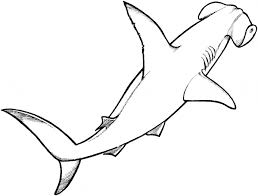 Small Picture Shark Coloring Pages 26 Coloring Kids