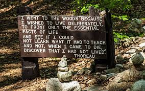 Thoreau Walden Quotes Enchanting MWCC Humanities Project Launches With Series Of Events On Thoreau's
