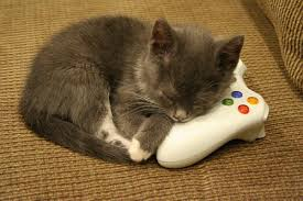 Cats playing video games - Bravado Gaming
