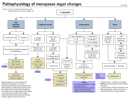 Menopause Mcmaster Pathophysiology Review