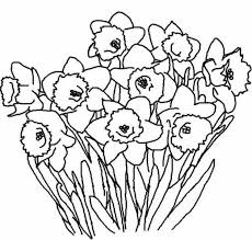 Print Spring Flowers Coloring Pages Kids Or Download Spring