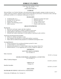 Entry Levelob Resume Oklmindsproutco Example Of Chelshartman Me