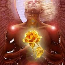 Resultado de imagen de la semilla estelar del amor
