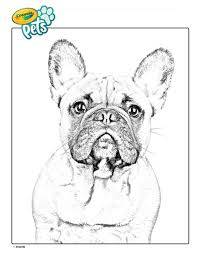 New year lucky color 2018 to wear. French Bulldog Pet Dog Coloring Page Crayola Com