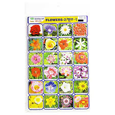 Buy Education Chart Set Of Flowers Online At Low Prices In