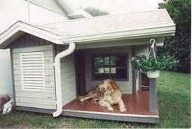 real dog houses