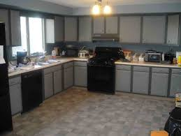 Kitchens With Black Appliances Grey Kitchen Cabinets With Black Appliances Winda 7 Furniture