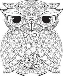owl pictures to colour in. Wonderful Owl Seth Owl  Colour With Me HELLO ANGEL Coloring Design Detailed  Meditationu2026 On Pictures To In S