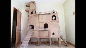 Cardboard House For Cats Crazy Cardboard Cat Tree Youtube