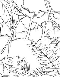 Amazon Animal Coloring Pages Download Online For Free Part Animals