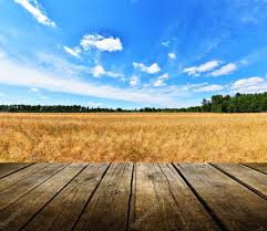 empty wooden deck table with blue sky and field stock photo