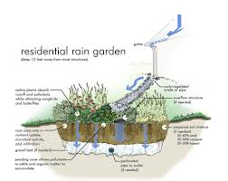 Small Picture Photos of Rain Gardens Rain Garden Graphic Simulation from