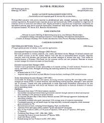 Key Account Manager Resume Templates Advertising Objective Summary
