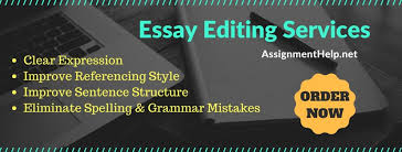 essay editing services essay writing help essay editing services