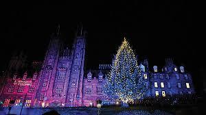 View in gallery Edinburgh Christmas tree