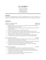 Resume Objectives For Sales Car Salesman Resume Objective Well Car