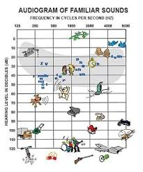 Hearing Chart Pin On Hearing Explained And Explored