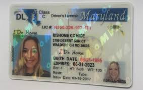 Ids E-commerce Fake scannable Id Of Online Maryland md Ids Art buy For Best The Quality Sale