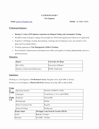 Sample Resume For Download Sample Of Resume Word Format Inspirational Sample Resume Format 20