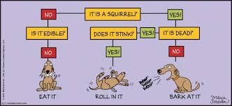 Flow Chart Cartoon Dog Flow Chart