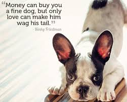 Dog Quotes Love Custom 48 Dog Quotes About Love And Compassion SpartaDog Blog