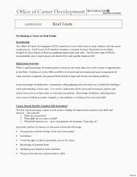 Real Estate Agent Marketing Plan Lukesci Resume Bussines