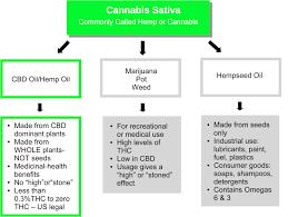 Hemp Uses Chart Cbd Medical Uses