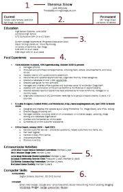 Building A Resume For Free Thekindlecrew Com